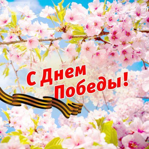 «Мария» поздравляет вас с Днем великой Победы!